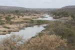 Olifants River View Looking Upstream. Camp is on Hill Top Right | Kruger National Park