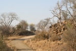 Impressive Scene of Rocks and Road | Kruger National Park