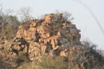 The North Edge of my Fantasy Ridge | Kruger National Park