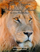 Kruger National Park Far More Than The Big Five Book